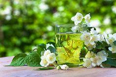 11 Amazing Health Benefits of Drinking Jasmine Tea #Jasmine #Tea #Health