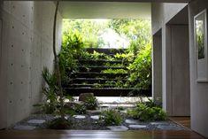 betonhaus singapur landschaftsbau innenbereich palmen