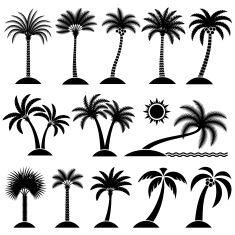 Palm Tree Tropical vector icon set vector art illustration