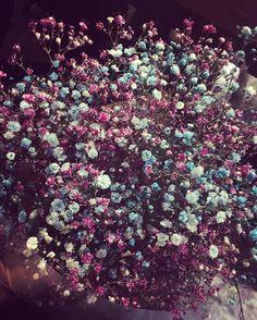 #안개꽃 #플라워 #flower #dryflower #드라이플라워 #컬러 #꽃 #예쁘다 #예쁘다그램 #선물 #기분좋음  꽃선물은 누가 주든 언제나 기분이 좋으다 by miniwhdk
