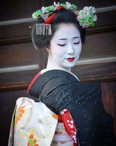 Japanese Costume, Japanese Kimono, Japanese Art, Traditional Japanese, Geisha Japan, Geisha Art, Kyoto Japan, Kabuki Costume, China Dolls