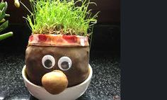 We make a grass head. It's easy and the kids have a lot of fun … - Diy & Craft Mix Trend Diy For Kids, Crafts For Kids, Diy And Crafts, Arts And Crafts, Mom Day, Mother's Day Diy, Christmas Gifts For Mom, Craft Night, Diy Weihnachten