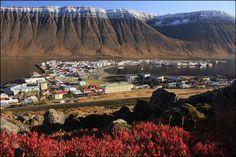 Ísafjörður - the capital of the West Fjords. With population of 2600 people.