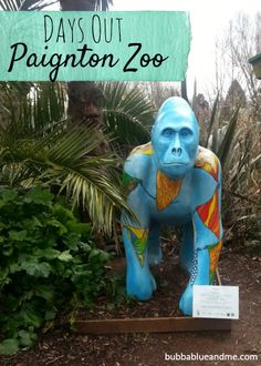 Day out at Paignton Zoo, Devon