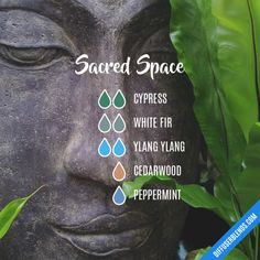 Sacred Space - Essential Oil Diffuser Blend