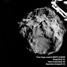Ingredients regarded as crucial for the origin of life on Earth have been discovered at the comet that ESA's Rosetta spacecraft has been probing for almost two years.
