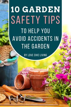 Heading into the garden this summer? Here are 10 gardening safety tips that will help prevent an accident in your garden. Safe garden steps for your to follow and prevent injury. Contemporary Garden Rooms, Drink Plenty Of Water, Garden Steps, Garden Equipment, Wear Sunscreen, Gardening Gloves, Injury Prevention, Garden Spaces, Keep An Eye On