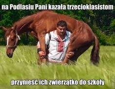 Ukrainian Strongman Makes a Name for Himself by Carrying Horses on His Back – MAXEAT Very Funny Memes, Wtf Funny, Lama Faché, Funny Mems, Everything And Nothing, Etiquette, Best Memes, I Laughed, Laughter