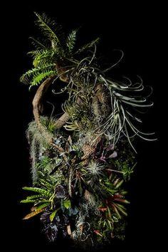 SORN/Art: The Floral World of Makoto Azuma   sornmag.com