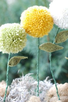 adorable pompom flowers. just adorable.