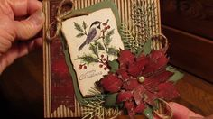 CHRISTMAS CARD USING TIM HOLTZ TATTERED POINSETTIA DIE.