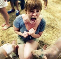 Pig-phobia ~ Animal Encyclopedia