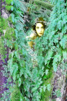 Little fairy hidden in the trees. Model stock from http://lockstock.deviantart.com Background/textures. my stock