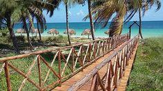 3 months till the girls getaway! Pullman Cayo Coco, Cayo Coco Cuba, Girls Getaway, Archipelago, Cant Wait, 3 Months, Trip Advisor, Wanderlust, Beach