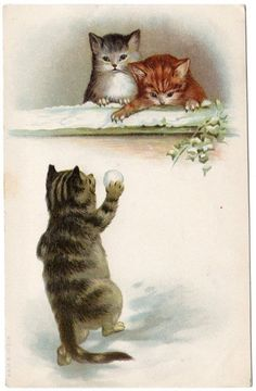 Early Helena Maguire?  CATS KITTENS Playing in Snow A Postcard