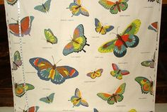 Butterfly fabric document print from Brick House Fabric: Novelty Fabric