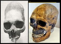 "The Nephilim Chronicles: Fallen Angels in the Ohio Valley: Comparing Combe-Capelle Skulls with the ""Archaic"" Maritime Archaic of North America"