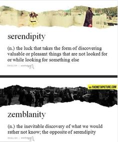 Serendipity (n.) The luck that takes the form of discovering valuable or pleasant things that are not looked for or while looking for something else. Zemblanity (n.) The inevitable discovery of what we would rather not know; the opposite of serendipity.