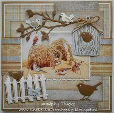 Tineke's kaartenhoekje: Birds