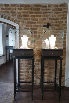in a jewelry store in Lithuania. Furniture Manufacturers, Glass Domes, Lithuania, Jewelry Stores, Counter, Entryway Tables, Interior Design, Home Decor, Nest Design