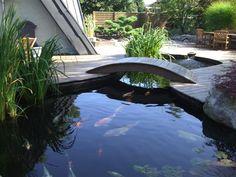 1000 id es sur le th me plantes aquatiques sur pinterest tangs jardins d 39 eau et jardinage - Bassin aquatique contemporain calais ...