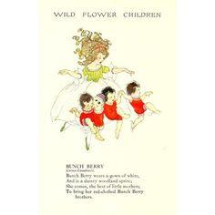 Wild Flower Children c1918 Bunch Berry Canvas Art - Janet Laura Scott (18 x 24)