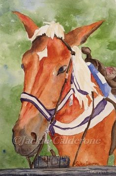 Brown Horse with White Mane Original by JackieCalderoneArt on Etsy