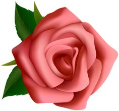 """Photo from album """"РОЗЫ"""" on Yandex. Rose Clipart, Flower Clipart, Rose Flower Wallpaper, Flower Backgrounds, Flower Art Images, Flower Pictures, Pink Rose Flower, Purple Roses, Beautiful Flowers Wallpapers"""