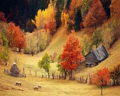Romania country side