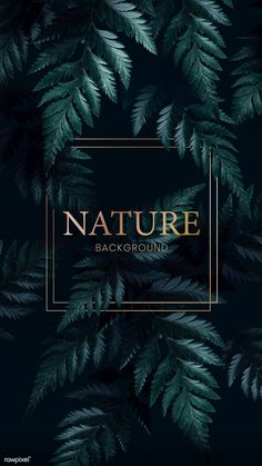 Search Free and Premium stock photos, vectors and psd mockups Funky Quotes, Framed Leaves, Jungle Art, Tropical Background, House Front Design, Summer Landscape, Art Graphique, Tropical Plants, Royalty Free Images