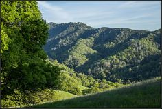 Climbing Mount Diablo by Morrow Cove, via Flickr