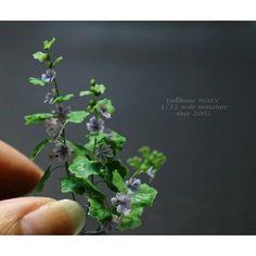 """559 Likes, 7 Comments - Yukari  Miyazaki (@yukari_mwm) on Instagram: """"1/12scale miniature flowers  まだ葉の数が足りません! 鉢植えにする予定です #miniature #crayart ##ミニチュアフラワー #クレイフラワー…"""""""