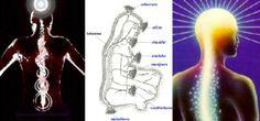 Hace miles de años, los maestros taoístas descubrieron los centros de Chi (energía) del cuerpo, mediante la observación interior