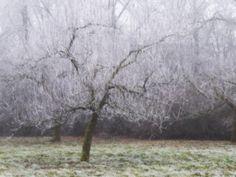 "Popatrz na ten projekt w @Behance: ""Winter in Linschoten nr 2"" https://www.behance.net/gallery/46904571/Winter-in-Linschoten-nr-2"