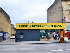 Seed Bank by Jasmine Kelly