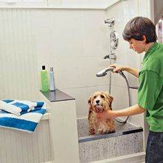 How to Plan a Dog Cleaning Station - A dedicated washing area for your most dedicated friend makes bath time a breeze Grooming Salon, Pet Grooming, Portable Dog Kennels, Dog Washing Station, Dog Cleaning, Dog Area, Basement House, Dog Rooms, Dog Shower