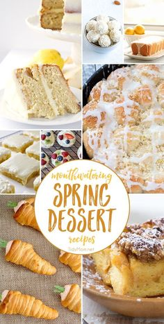 Mouthwatering Spring Dessert Recipes will get you in the mood for the season and sunshine! You will want to make them all!! get all the dessert recipes at TidyMom.net