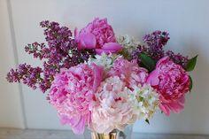 Year of Flowers: 11 by gogoabigail, via Flickr