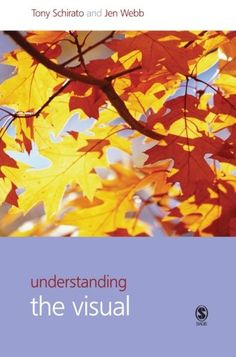$$$ Cheap Price Understanding the Visual (Understanding Contemporary Culture series)