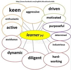 Collocations with the word 'learner'.
