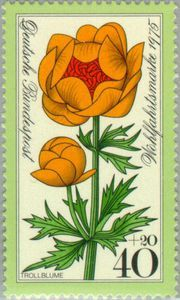 Stamp: Globe-flower (Germany, Federal Republic) (Welfare: Alpine flowers) Mi:DE 868,Sn:DE B522,Yt:DE 717,AFA:DE 1825