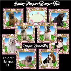 Spring Puppies Bumper Kit on Craftsuprint designed by Donna Kelly - A different adorable puppy adorn the center of each of the8 (approx 7x7) card fronts in this kit. Also Included is 8 approx 3.5x3.5 gift tags, an insert that can be used for all. There are tags on each sheet as well as 2 sheets of the decoupage puppies( you can choose to use these or not) Sentiments read, Happy Birthday, Best Wishes