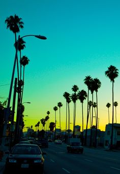 In the city of California,,,,,,,,,,,,,,,,