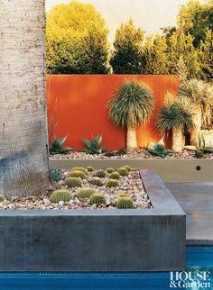 palm springs modern landscape - Google Search
