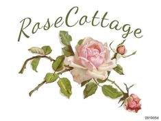 Shabby Chic Home Decor Tea Roses, Pink Roses, Cottage Signs, Rose Cottage, Cottage Chic, Thing 1, Desert Rose, Vintage Labels, Shabby Chic Furniture