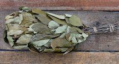 Apfelbaum - Reisig für Sauna, ca 45-50 cm lang