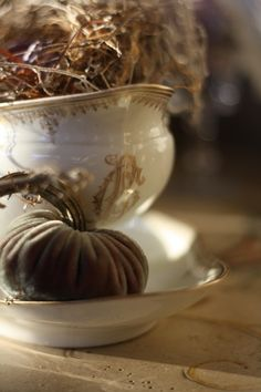 a french-gilded autumn with a velvet pumpkin