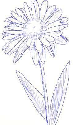 How to Draw a Daisy, step 4