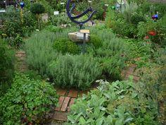 Health 2020, Herb Garden, Herbalism, Pergola, Herbs, Plants, Outdoor, Gardening, Therapy