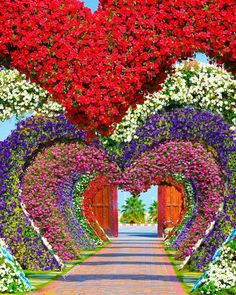 How To Start Organic Gardening Vegetables Key: 4811221738 Photo Background Images, Background For Photography, Photo Backgrounds, Most Beautiful Gardens, Beautiful Flowers Garden, Flower Wallpaper, Nature Wallpaper, Dubai Garden, Dig Gardens